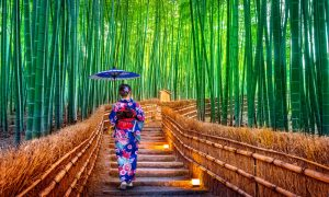 Bamboo-Forest.-Asian-woman-wearing-japanese-traditional-kimono-at-Bamboo-Forest-in-Kyoto-Japan