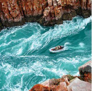Broome & Kimberley Coral Adventurer #8
