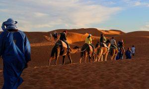 Camel-caravan-trip-adventure-sahara-desert