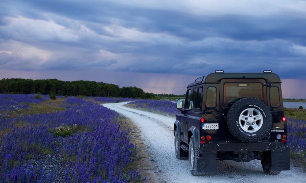 Self-drive-lavender-field
