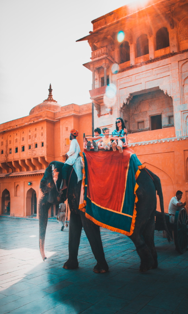amber-fort-palace-india-elephant