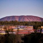 flield-of-light-uluru-northern-territory