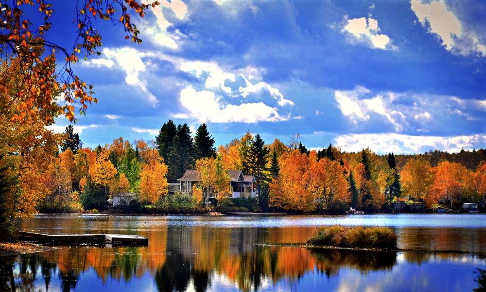 autumn-leaves-landscape-nature-colours