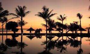 bali-sunset-palm-trees