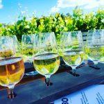 Marinborough wine tasting tour North Island New Zealand