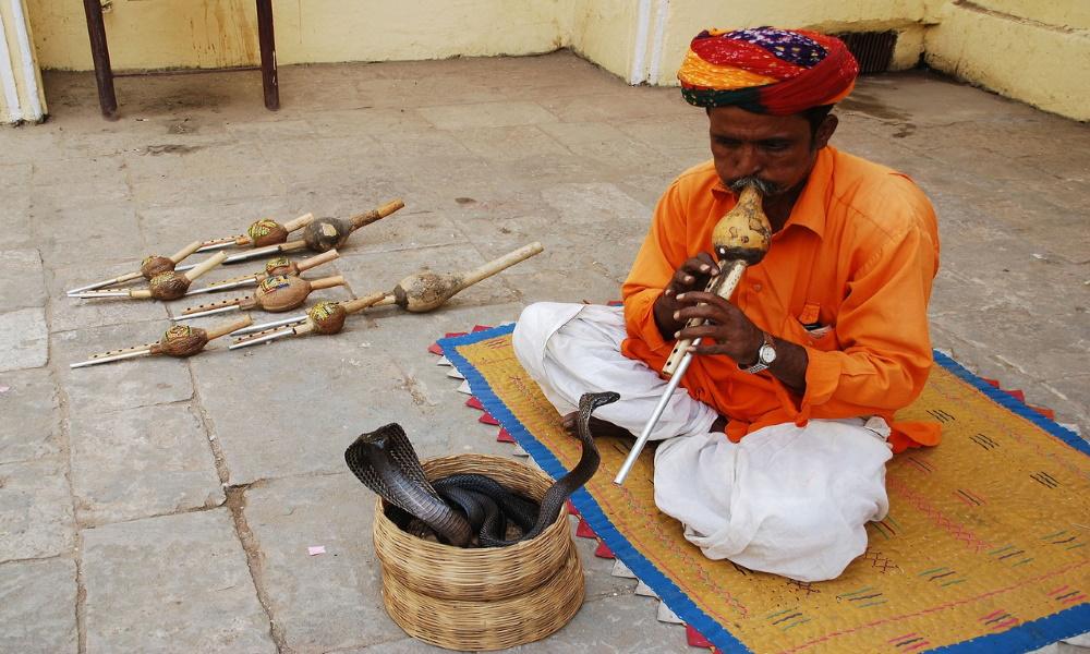 snake-charmer-jaipur-amber-fort-travels